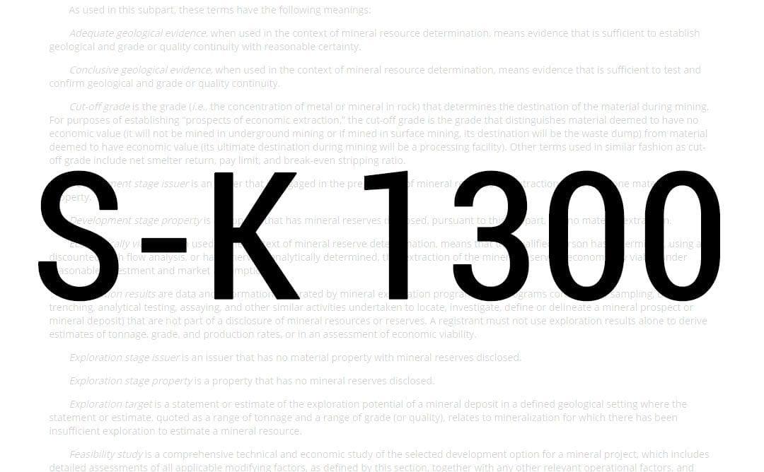 S-K 1300